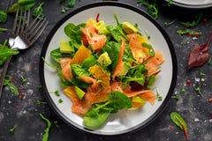 Φρέσκια σαλάτα σολομών με τα πορτοκαλιών και πράσινων λαχανικά αβοκάντο, Στοκ φωτογραφία με δικαίωμα ελεύθερης χρήσης