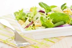 φρέσκια σαλάτα τυριών Στοκ εικόνα με δικαίωμα ελεύθερης χρήσης