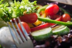 Φρέσκια σαλάτα κινηματογραφήσεων σε πρώτο πλάνο, ντομάτα, αγγούρι, πιπέρι κουδουνιών Στοκ εικόνα με δικαίωμα ελεύθερης χρήσης