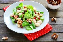 Φρέσκια σαλάτα με τα φασόλια και τα καρύδια στοκ εικόνα