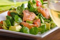 Φρέσκια σαλάτα με το σολομό Στοκ εικόνες με δικαίωμα ελεύθερης χρήσης