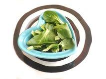 φρέσκια σαλάτα πεδίων Στοκ εικόνα με δικαίωμα ελεύθερης χρήσης