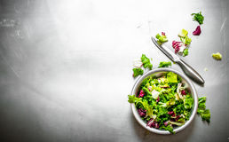 φρέσκια σαλάτα πρασίνων Στοκ Εικόνες