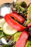 φρέσκια σαλάτα Στοκ Εικόνα