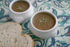 φρέσκια σούπα κρεμμυδιών Στοκ εικόνα με δικαίωμα ελεύθερης χρήσης