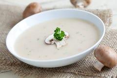 φρέσκια σούπα μανιταριών Στοκ εικόνα με δικαίωμα ελεύθερης χρήσης