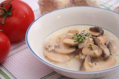 Φρέσκια σούπα μανιταριών Στοκ Φωτογραφίες