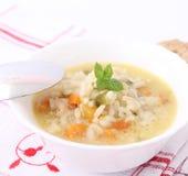 Φρέσκια σούπα με το κοτόπουλο και το ρύζι Στοκ φωτογραφία με δικαίωμα ελεύθερης χρήσης