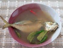 Φρέσκια σούπα σκουμπριών Στοκ φωτογραφία με δικαίωμα ελεύθερης χρήσης