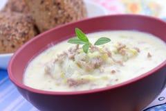 φρέσκια σούπα τυριών Στοκ φωτογραφίες με δικαίωμα ελεύθερης χρήσης