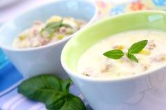 φρέσκια σούπα τυριών Στοκ Φωτογραφία