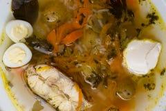 Φρέσκια σούπα ψαριών με τα λαχανικά, τα χορτάρια και τα αυγά στο άσπρο πιάτο Σούπα με τα συστατικά και τα καρυκεύματα για το μαγε Στοκ φωτογραφίες με δικαίωμα ελεύθερης χρήσης