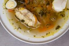Φρέσκια σούπα ψαριών με τα λαχανικά, τα χορτάρια και τα αυγά στο άσπρο πιάτο Σούπα με τα συστατικά και τα καρυκεύματα για το μαγε Στοκ Εικόνα