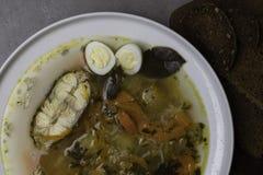 Φρέσκια σούπα ψαριών με τα λαχανικά, τα χορτάρια και τα αυγά στο άσπρο πιάτο Σούπα με τα συστατικά, τα καρυκεύματα, το ρύζι και τ Στοκ Φωτογραφία