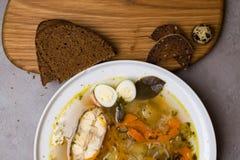 Φρέσκια σούπα ψαριών με τα λαχανικά, τα χορτάρια και τα αυγά στο άσπρο πιάτο Σούπα με τα συστατικά, τα καρυκεύματα, το ρύζι και τ Στοκ Εικόνα