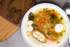 Φρέσκια σούπα ψαριών με τα λαχανικά, τα χορτάρια και τα αυγά στο άσπρο πιάτο, με το κουτάλι Σούπα με τα συστατικά και τα καρυκεύμ Στοκ Φωτογραφία