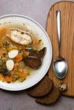 Φρέσκια σούπα ψαριών με τα λαχανικά, τα χορτάρια και τα αυγά στο άσπρο πιάτο, με το κουτάλι Σούπα με τα συστατικά και τα καρυκεύμ Στοκ εικόνα με δικαίωμα ελεύθερης χρήσης