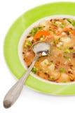 φρέσκια σούπα Στοκ εικόνες με δικαίωμα ελεύθερης χρήσης