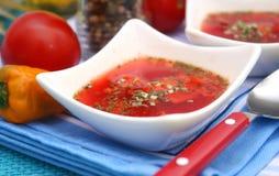 Φρέσκια σούπα Στοκ Φωτογραφίες