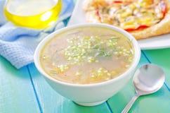 Φρέσκια σούπα Στοκ φωτογραφία με δικαίωμα ελεύθερης χρήσης