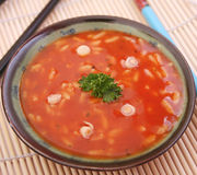 φρέσκια σούπα Στοκ Εικόνα