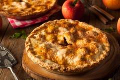 φρέσκια σπιτική πίτα μήλων Στοκ Φωτογραφίες