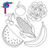 Φρέσκια συλλογή εικόνας χρωματισμού Στοκ εικόνες με δικαίωμα ελεύθερης χρήσης