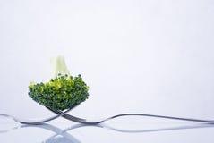 Φρέσκια σύνθεση μπρόκολου Στοκ φωτογραφία με δικαίωμα ελεύθερης χρήσης