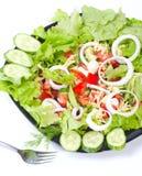 φρέσκια υγιής σαλάτα Στοκ Φωτογραφίες