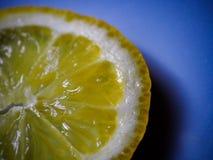 φρέσκια φέτα λεμονιών κίτρινη στοκ εικόνες με δικαίωμα ελεύθερης χρήσης