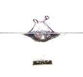 Φρέσκια φέτα του αγγουριού Στοκ φωτογραφία με δικαίωμα ελεύθερης χρήσης