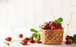 φρέσκια φράουλα στοκ φωτογραφίες με δικαίωμα ελεύθερης χρήσης