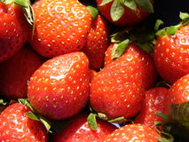 φρέσκια φράουλα Στοκ Φωτογραφίες