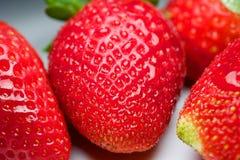 Φρέσκια φράουλα για τη διασκέδαση και την ευχαρίστηση Στοκ φωτογραφία με δικαίωμα ελεύθερης χρήσης