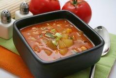 Φρέσκια φυτική σούπα Στοκ Εικόνες