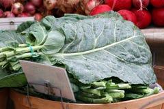 φρέσκια φωτογραφία πρασίνων λάχανων Στοκ Εικόνες