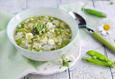 Φρέσκια χορτοφάγος ιταλική σούπα minestrone Στοκ Εικόνα