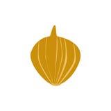 Φρέσκια χρυσή απομονωμένη κρεμμύδι διανυσματική απεικόνιση Στοκ Εικόνες
