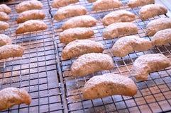 Φρέσκια ψημένη ημισεληνοειδής ψύξη μπισκότων Στοκ Εικόνες