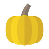 Φρέσκια ώριμη κίτρινη κολοκύθα διανυσματική απεικόνιση