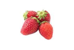φρέσκια ώριμη φράουλα Στοκ Εικόνα