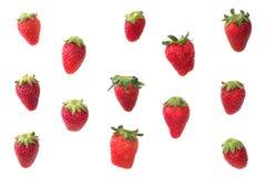 φρέσκια ώριμη φράουλα Στοκ εικόνα με δικαίωμα ελεύθερης χρήσης