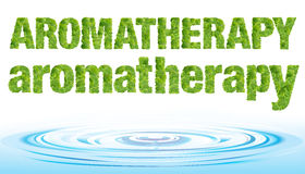 Φρέσκια aromatherapy λέξη στη μέντα με την πτώση νερού, που απομονώνεται στο άσπρο υπόβαθρο Στοκ Φωτογραφία