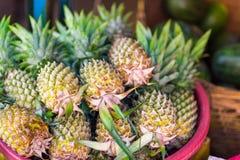 Φρέσκοι ανανάδες για την πώληση Στοκ φωτογραφίες με δικαίωμα ελεύθερης χρήσης