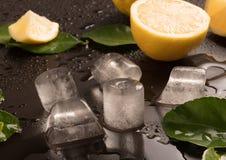 Φρέσκοι ασβέστες με τα φύλλα και τους κύβους πάγου Στοκ Φωτογραφίες