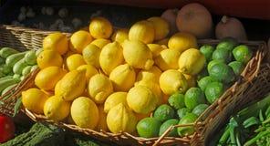 Φρέσκοι λεμόνια και ασβέστες Στοκ Εικόνες