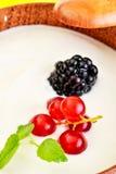 Φρέσκοι καρποί μούρων με το γιαούρτι Στοκ εικόνα με δικαίωμα ελεύθερης χρήσης