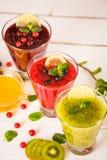 Φρέσκοι καταφερτζήδες μούρων και φρούτων Στοκ Εικόνες
