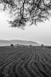 Φρέσκοι οργωμένοι γεωργικοί τομείς Στοκ φωτογραφία με δικαίωμα ελεύθερης χρήσης