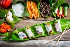 Φρέσκοι ρόλοι άνοιξη με τα λαχανικά και τα νουντλς ρυζιού στοκ εικόνες